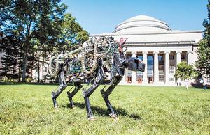 MIT روبات چیتا را آزمود