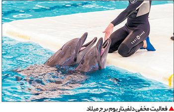 سرنوشت 800 پرونده قضایی شهردار سابق تهران