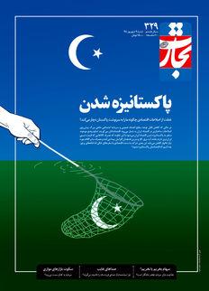 پاکستانیزه شدن